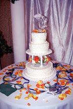 Ellis's cake yummo
