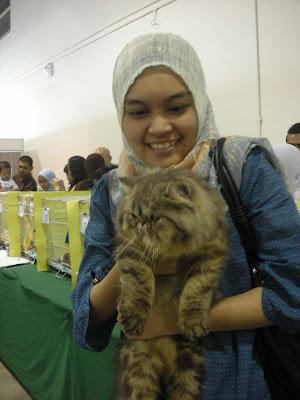 ... tiga kerana kategori favoritenya kucing malaysia ti