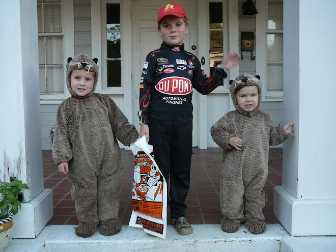 3 Cubs Ready for Action