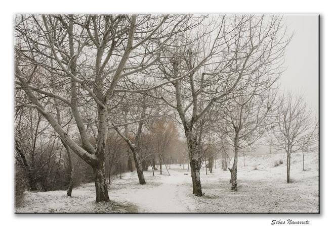Parque nevado 9 de enero 2009