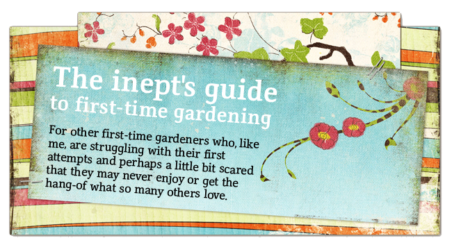 The inept's guide to first-time gardening