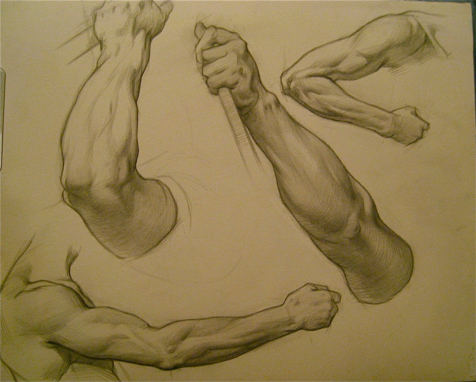 Artists who draw human anatomy