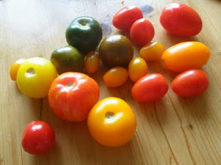 tomatoes from Pizza Therapy