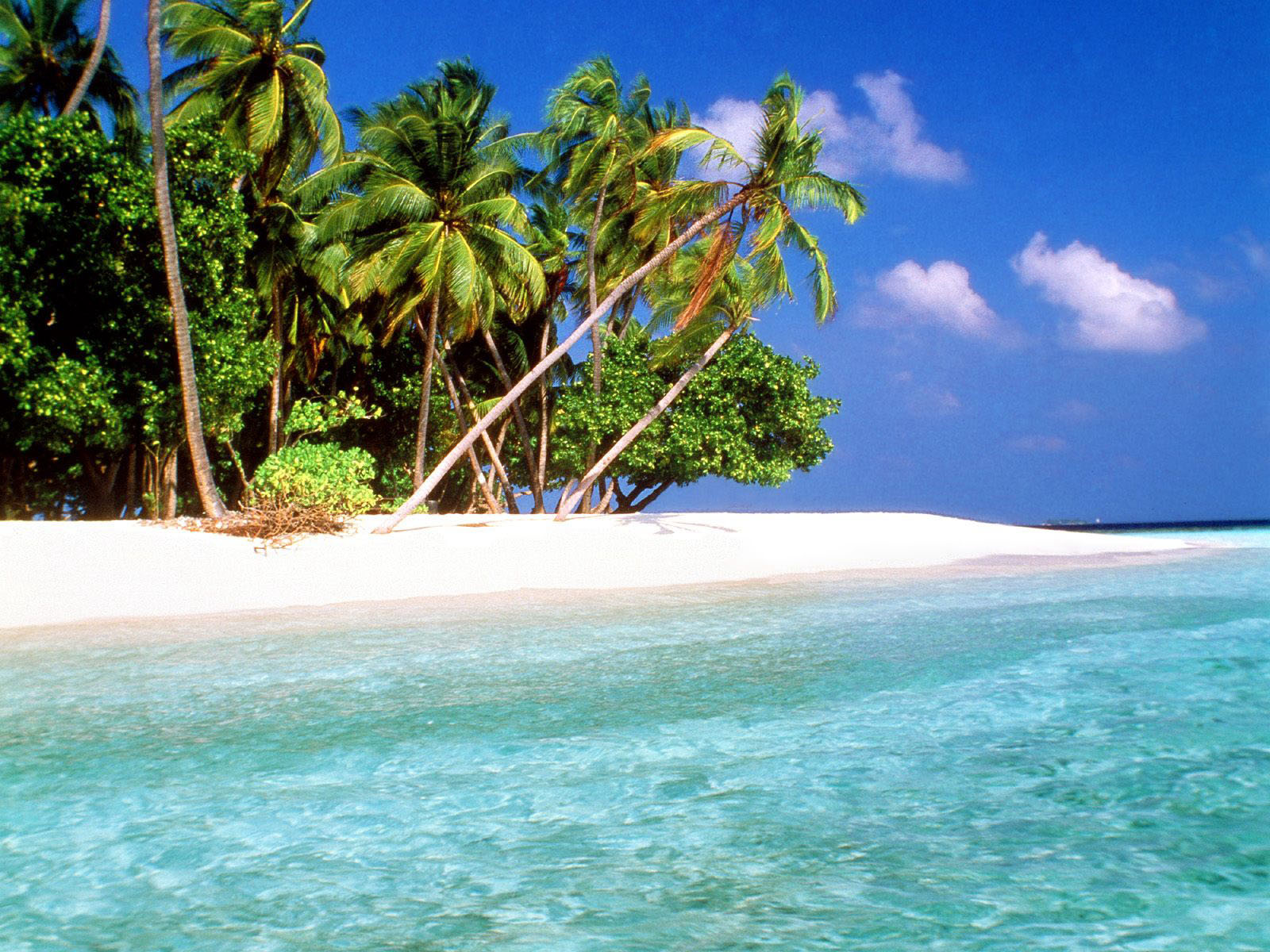 exotic islands maldives hd desktop wallpaper