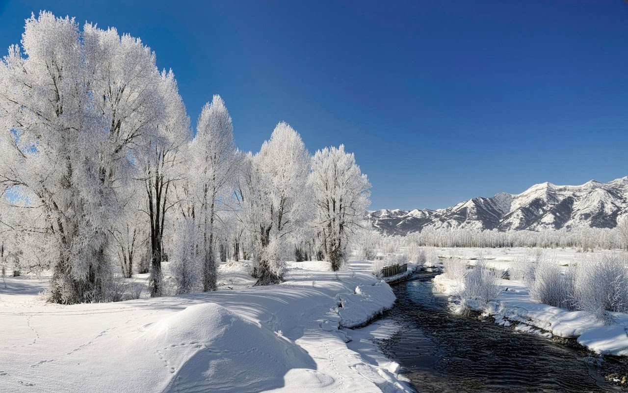 winter season winter scenery hd desktop wallpaper