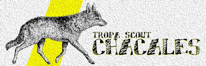 TROPA SCOUT CHACALES