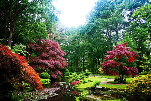 fotos jardins japoneses:Marzua: Jardín Japonés
