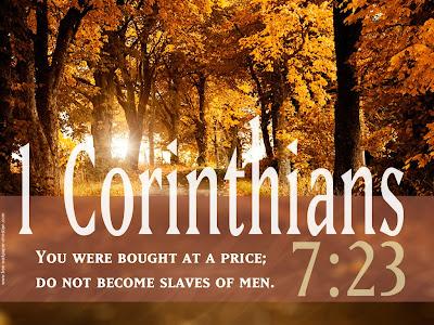 1 Corinthians 7:23 Verse