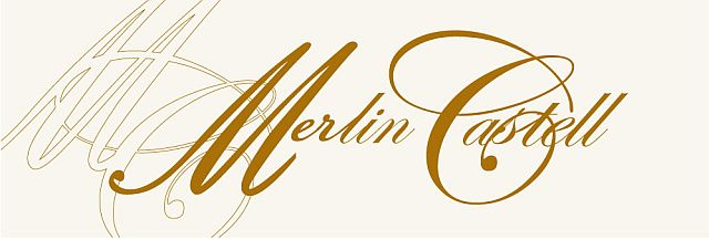 Merlin Castell Blog