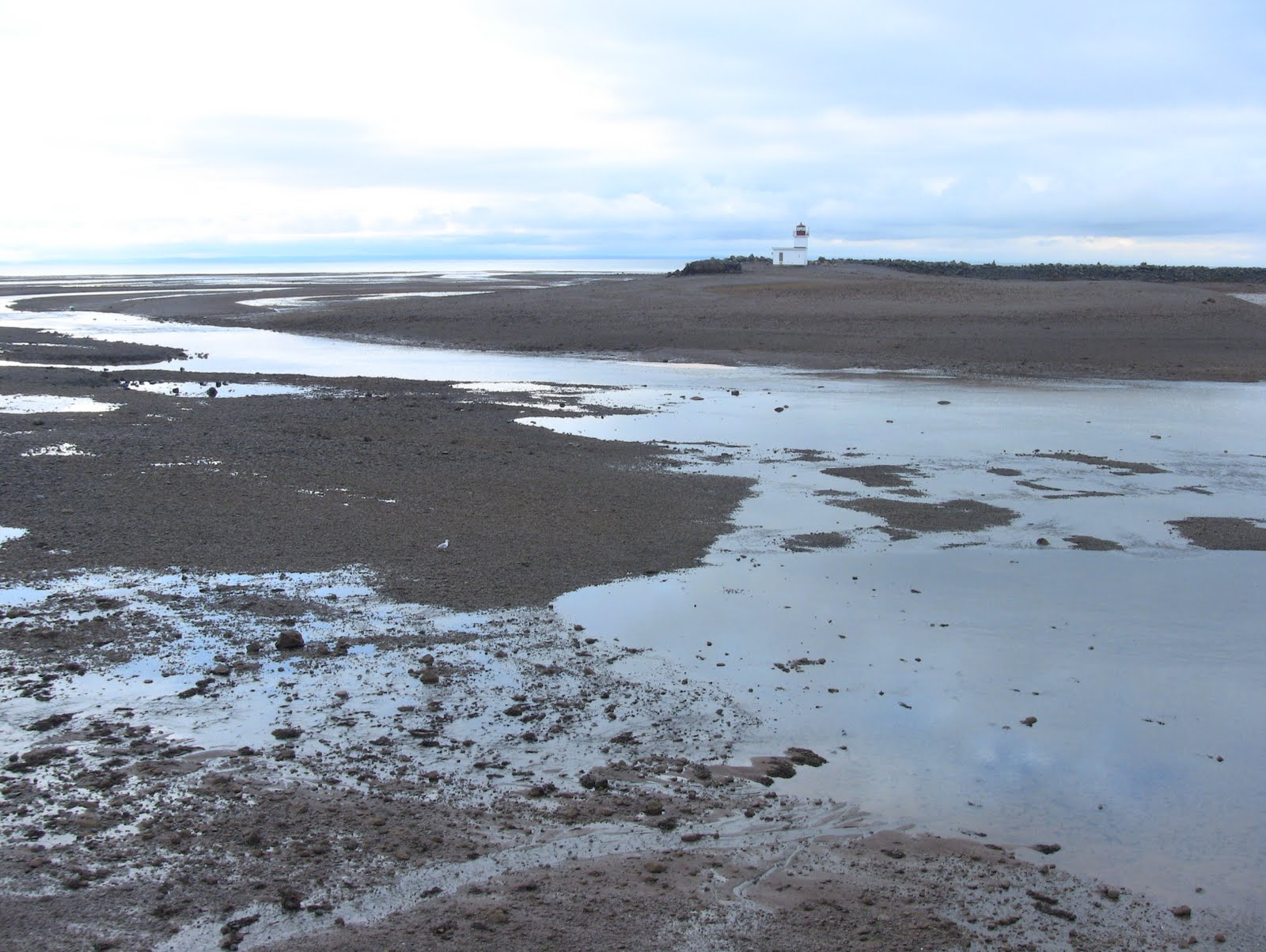 Bay of fundy blog biggest tides of the year today unless you live on the bay of fundy you may not be aware that tide heights vary every day a typical tide chart such as this dept of fisheries oceans one nvjuhfo Gallery