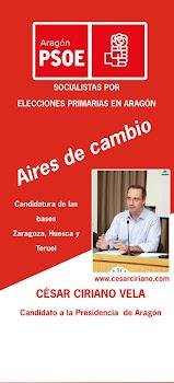 CANDIDATURA ELECCIONES PRIMARIAS PSOE ARAGÓN