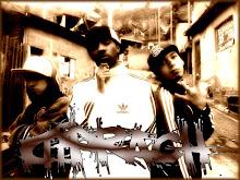 DIPRACH - 2009®