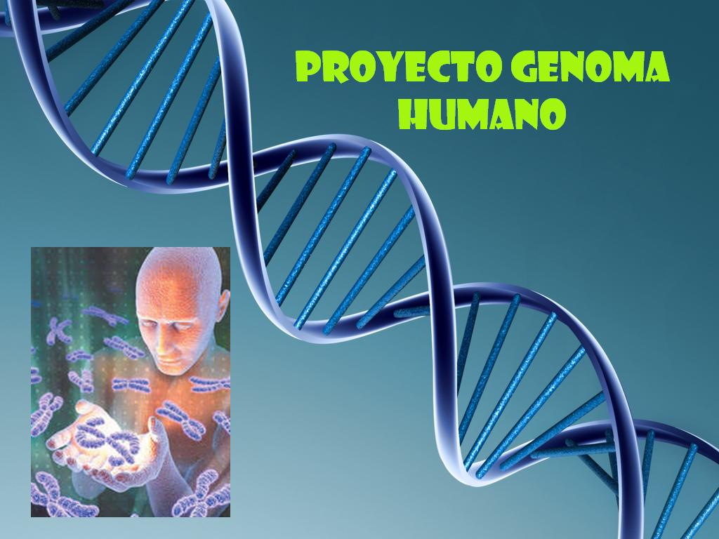 Proyecto Genoma Humano :)