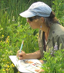 Sketching in the Field