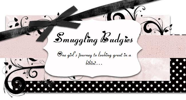 Smuggling Budgies