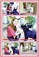 Snif Pets Adotados