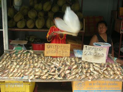 Thailande - Enfant au marché de Lamai