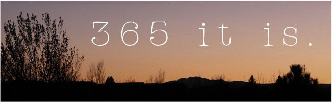 365 It is.