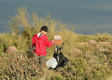 100 plein air paintings in 100 days - Spring 2010