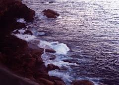 Brzeg, Botany Bay