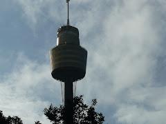 Link do Centrum Sydney, koło wieży Centre Point
