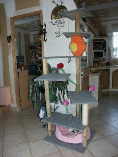 le chaudron aux perles arbre chats fait maison. Black Bedroom Furniture Sets. Home Design Ideas