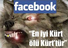 """Kürt düşmanlığı Facebook'ta : """"En iyi Kürt ölü Kürt'tür, Kürtlere soykırım yapılsın"""""""