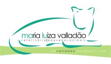 Médica Veterinária / Campinas