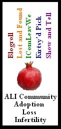 ALI Blogroll