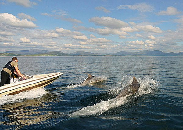Och d'Skellig Sea, zweschen den Skellig Rocks an dem Festland sin ee Paradies, wann et net bleist