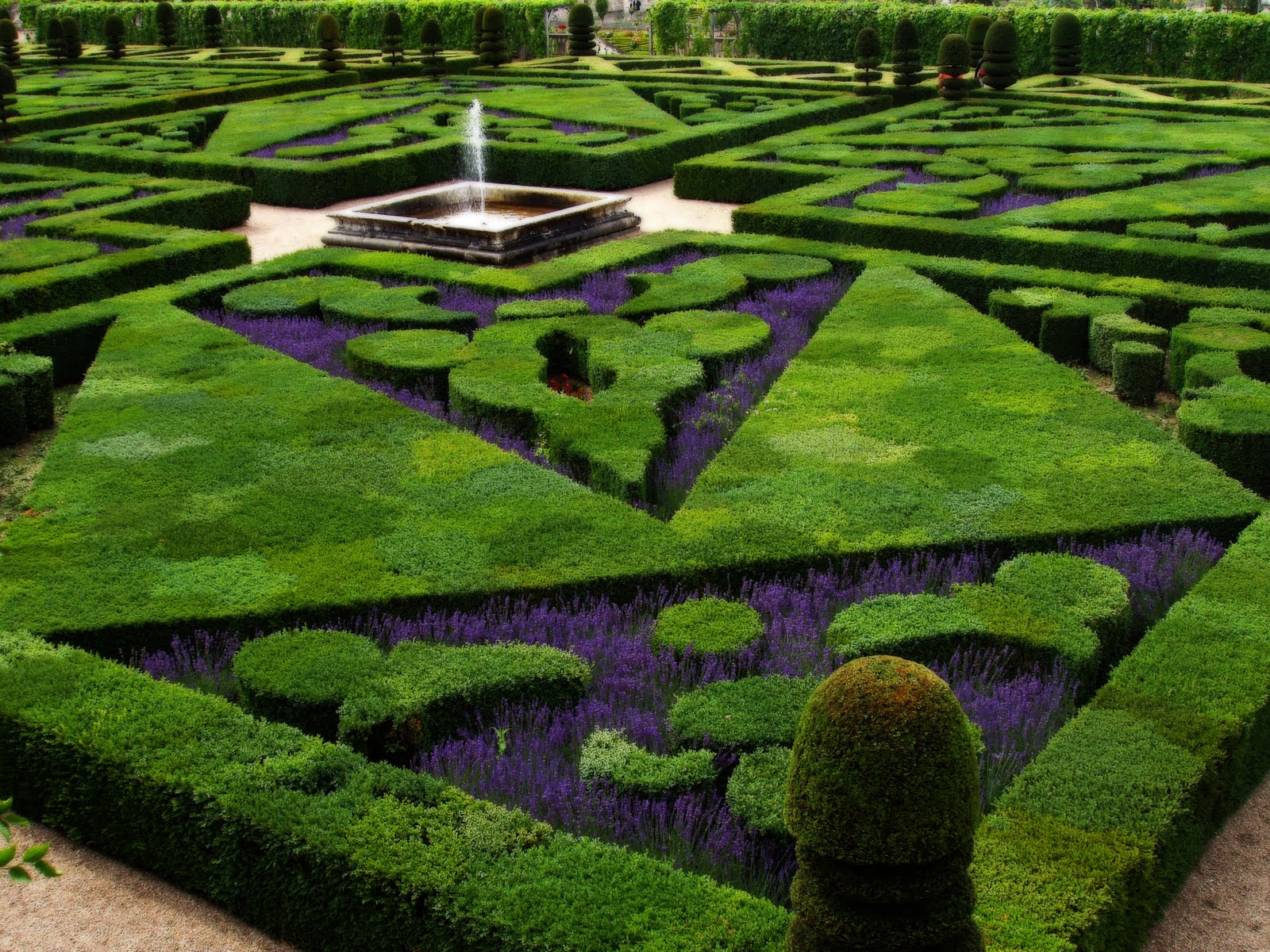 http://3.bp.blogspot.com/_2U3U6AwE-ZQ/S6tK3UIEyKI/AAAAAAAAAIg/z5yrOej6LwA/s1600/French_Formal_Garden_in_Loire_Valley(www.TheWallpapers.org).JPG