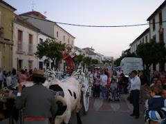 Romería 2009