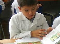Explorando libros en clases de Lenguaje...