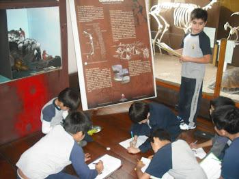 Alumnos de 4° Básico trabajando en Museo Regional...