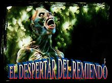 EL DESPERTAR DEL REMIENDO 1
