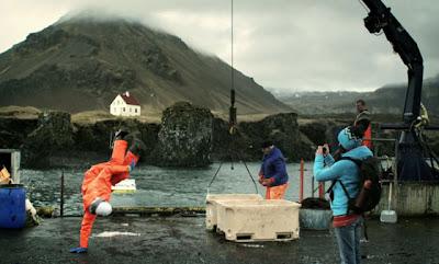 L'ISLANDE S'EN SORT GRÂCE À LA FAILLITE DES BANQUIERS  Iceland+dancer+islande+danceur