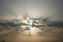 Luz é Liberdade