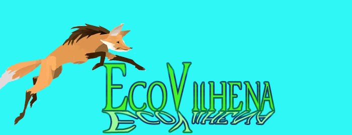blog de turismo ecologico de Vilhena