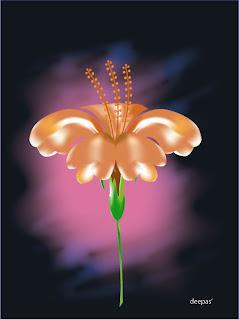 Hibiscus-HuesnShades