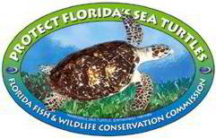 Go to the FWC Turtle Page