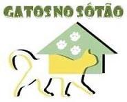 Gatos no Sótão