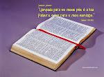 2 Timoteo 1.1  ¶ Tu, pois, meu filho, fortifica-te na graça que há em Cristo Jesus.