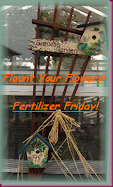 Tootsie's Flaunt your Flower/Fertiliser Friday