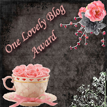 One lovely blog award for me:)