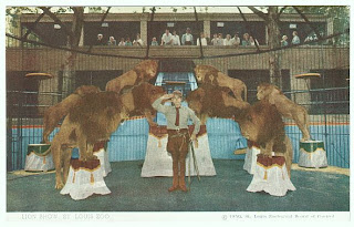 Photo of Jules Jacot with St. Louis Zoo lion show.