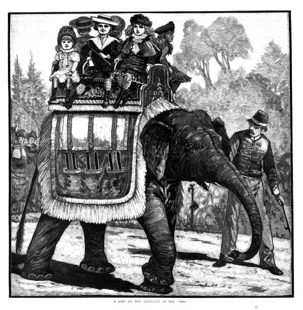 elephants story...