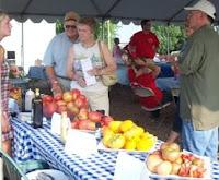 Tomato Days 2008