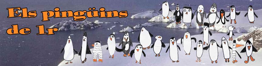 Els pingüins de primer