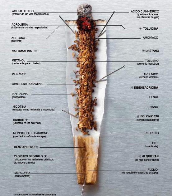 componentes del cigarrillo. COMPONENTES DEL CIGARRILLO