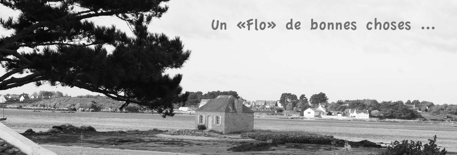 "Un ""flo"" de bonnes choses ..."